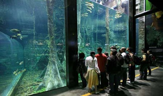 Medellin Aquarium today/ Source: Porsiquieresver