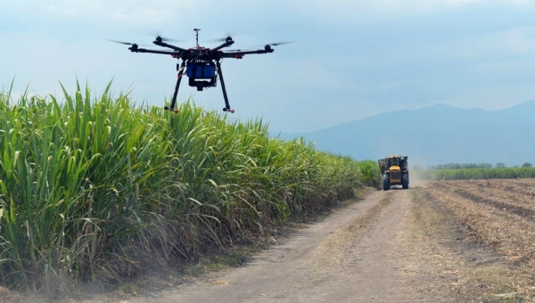 Drone Technology Wins Kudos in Farming