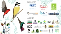 4th Annual Medellin Bird Festival October 11-16, 2017