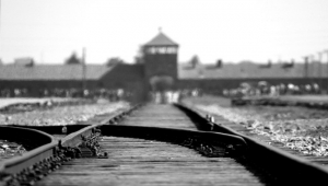 Medellin to Auschwitz and Back: Universal Lessons on Holocausts, Rebirth, Renewal