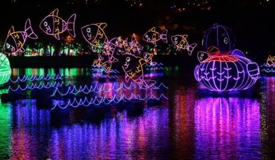 Rio Medellin Once Again Shines for Annual Xmas Lights Spectacular