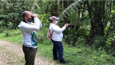 Authorized Medellin 'Global Big Day' Bird Surveyors Certified for Biosafety Protocols