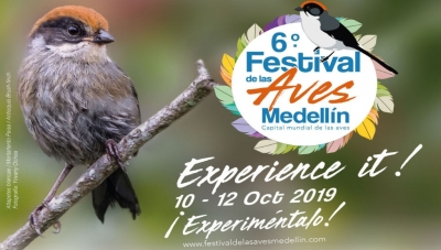 Medellin's 6th Annual Bird Festival October 10-14, 2019